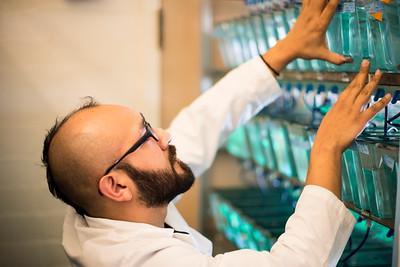 Molecular and Cellular Biology Lab